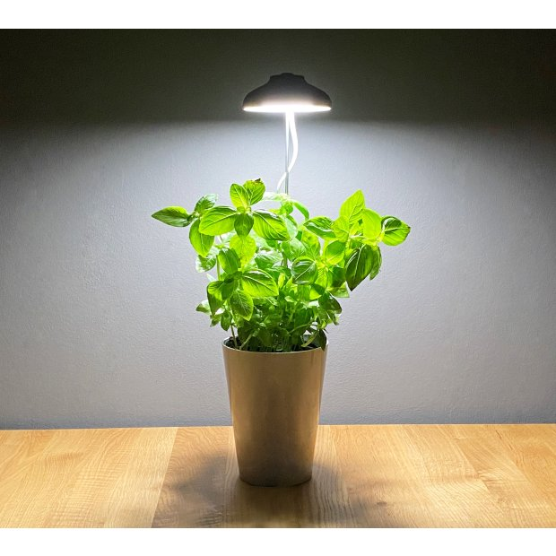 Northpoint LED 7W Pflanzenleuchte Pflanzenlampe Pflanzenbeleuchtung 70cm Teleskopstab Marmor