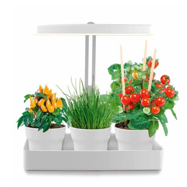 B-Ware Northpoint LED Pflanzenleuchte Gewächslampe 22W 1350 Lumen 10 Setzlinge Höhenverstellbar Wasserstandsanzeige Timer