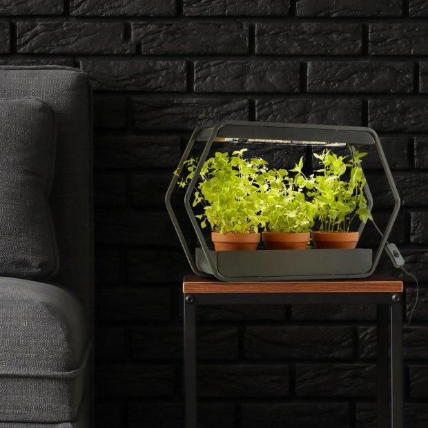 Northpoint Design LED Pflanzenleuchte Kräutergarten Innengarten Gewächslampe Metallgestell 14W 1000 Lumen Timer Industrial-Look