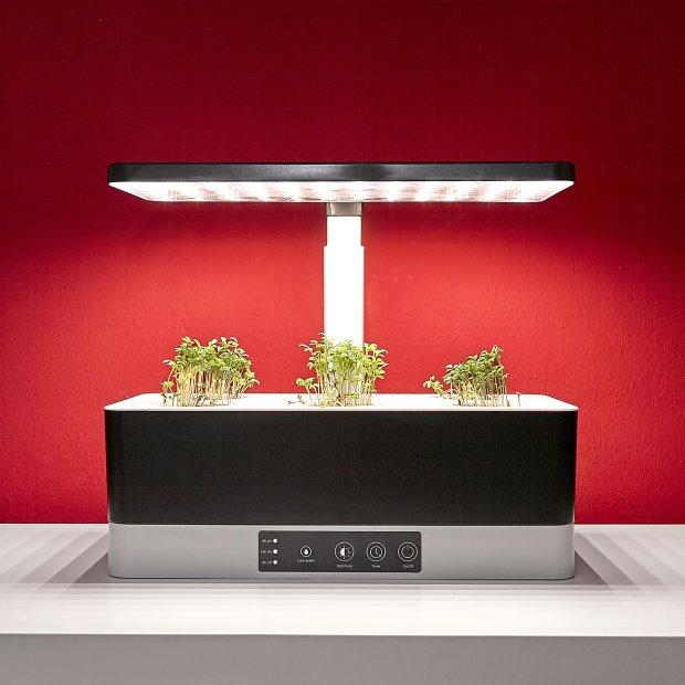 Northpoint Smarte LED Pflanzenleuchte Kräutergarten Innengarten Gewächslampe 20W 1600 Lumen 6 Setzlinge Höhenverstellbar Wasserstandsanzeige Timer