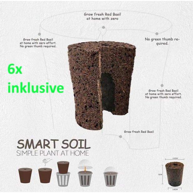 Northpoint Smart Soil Anzuchterde 12x Aussaaterde mit optimalem Nährstoffmix und Wasserspeicher geeignet Smarte Pflanzenlampe