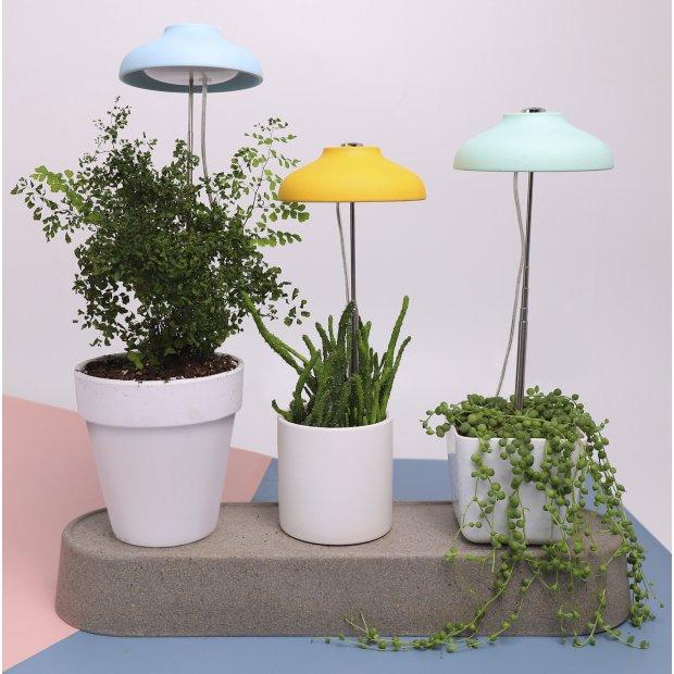 Northpoint LED Pflanzenleuchte Pflanzenlicht mit Teleskopstab Mintgrün