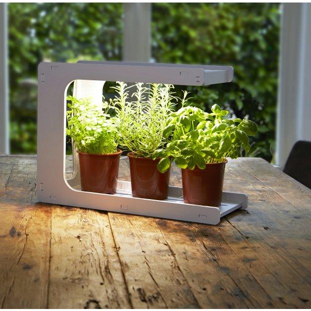 Northpoint LED Pflanzenleuchte Gewächslampe Pflanzenlicht 14W Grow Kräutergarten Timer Innengarten